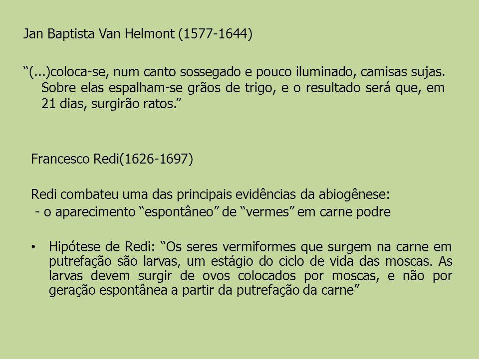 Jan Baptista Van Helmont (1577-1644) (...)coloca-se, num canto sossegado e pouco iluminado, camisas sujas. Sobre elas espalham-se grãos de trigo, e o