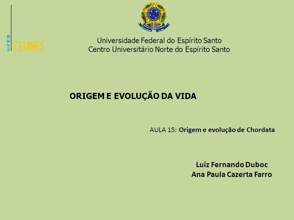 Universidade Federal do Espírito Santo Centro Universitário Norte do Espírito Santo ORIGEM E EVOLUÇÃO DA VIDA AULA 15: Origem e evolução de Chordata L