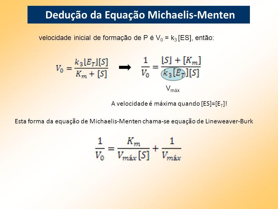 velocidade inicial de formação de P é V 0 = k 3 [ES], então: V máx A velocidade é máxima quando [ES]=[E T ]! Esta forma da equação de Michaelis-Menten