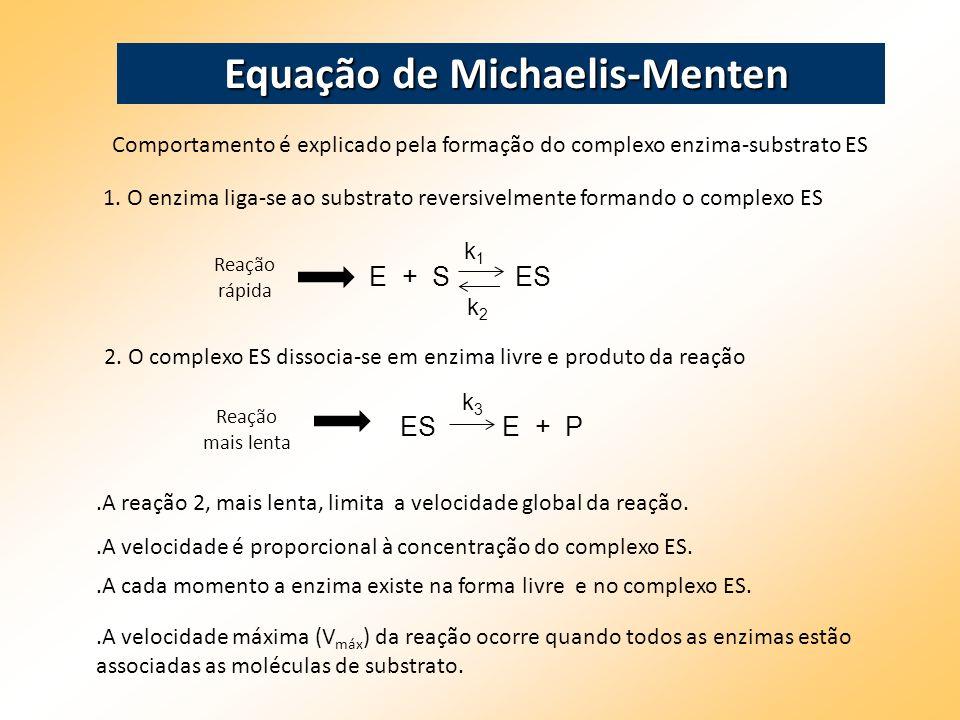 Comportamento é explicado pela formação do complexo enzima-substrato ES Equação de Michaelis-Menten 1. O enzima liga-se ao substrato reversivelmente f