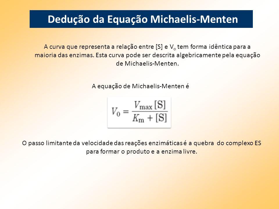 Dedução da Equação Michaelis-Menten A curva que representa a relação entre [S] e V o tem forma idêntica para a maioria das enzimas. Esta curva pode se