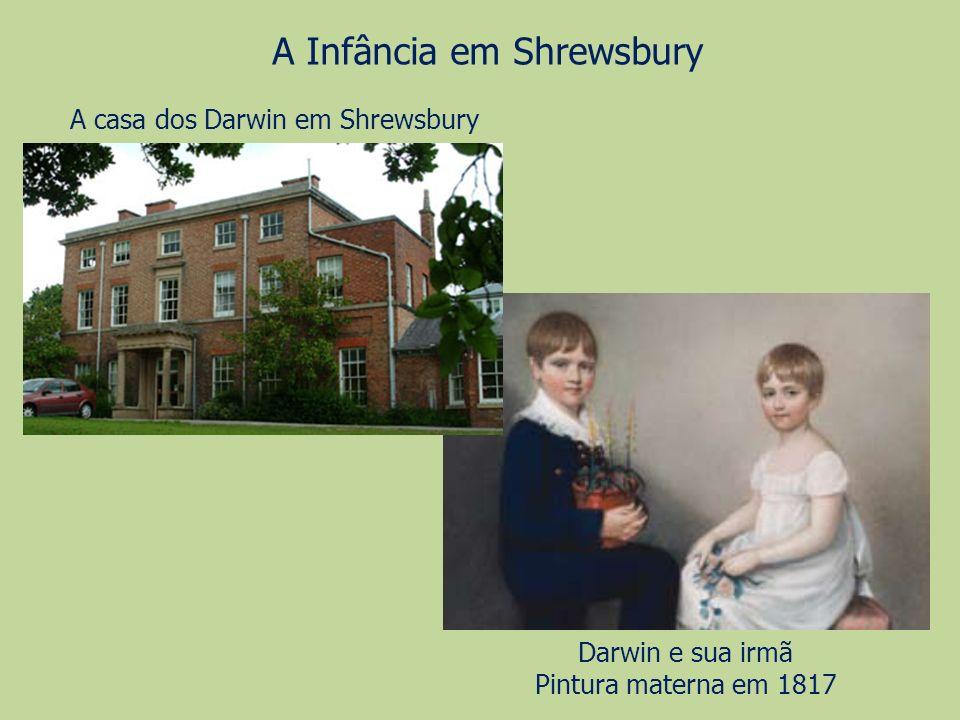 A Infância em Shrewsbury A casa dos Darwin em Shrewsbury Darwin e sua irmã Pintura materna em 1817