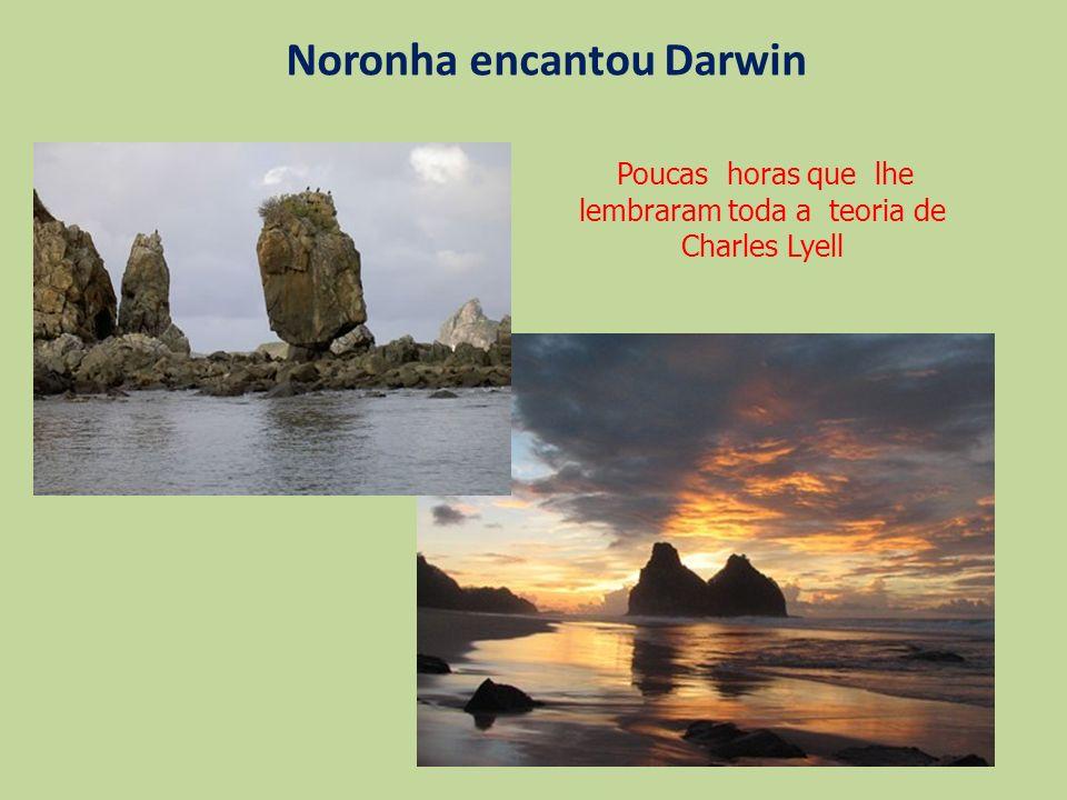 Noronha encantou Darwin Poucas horas que lhe lembraram toda a teoria de Charles Lyell