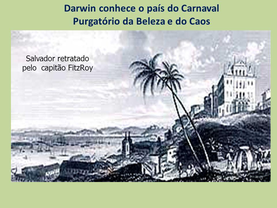 Darwin conhece o país do Carnaval Purgatório da Beleza e do Caos Salvador retratado pelo capitão FitzRoy