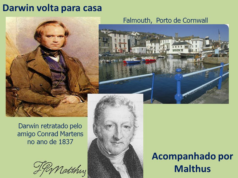 Darwin volta para casa Darwin retratado pelo amigo Conrad Martens no ano de 1837 Falmouth, Porto de Cornwall Acompanhado por Malthus