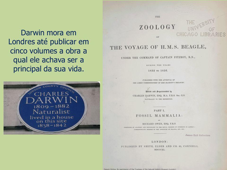 Darwin mora em Londres até publicar em cinco volumes a obra a qual ele achava ser a principal da sua vida.