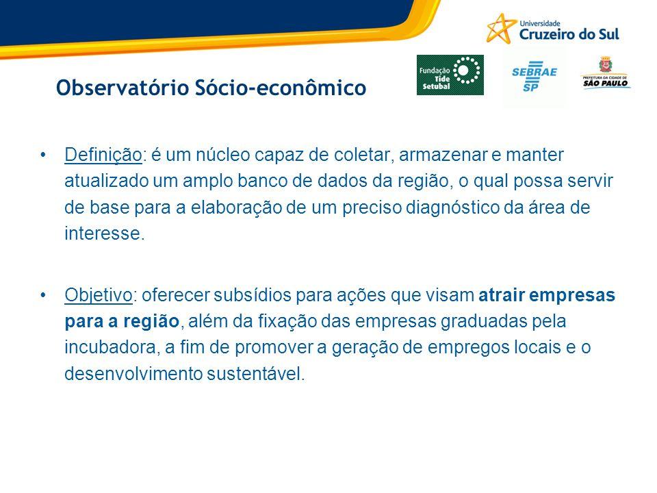 Observatório Sócio-econômico Definição: é um núcleo capaz de coletar, armazenar e manter atualizado um amplo banco de dados da região, o qual possa se