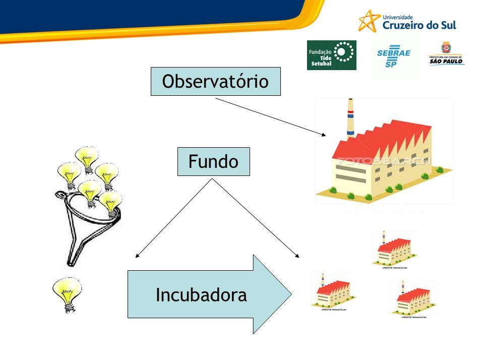 Incubadora Fundo Observatório