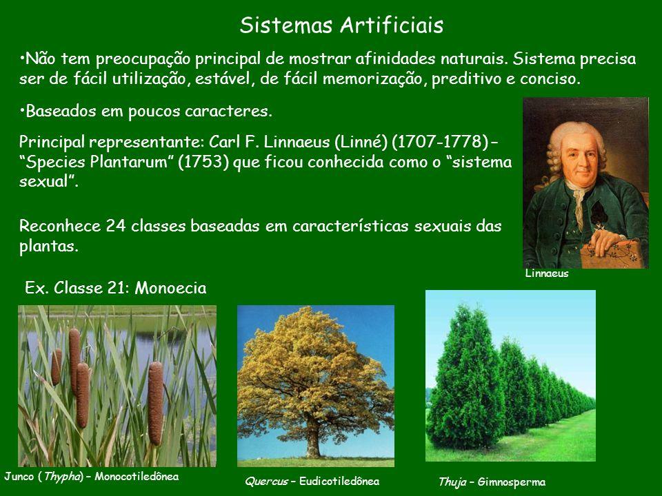 Sistemas Artificiais Não tem preocupação principal de mostrar afinidades naturais. Sistema precisa ser de fácil utilização, estável, de fácil memoriza