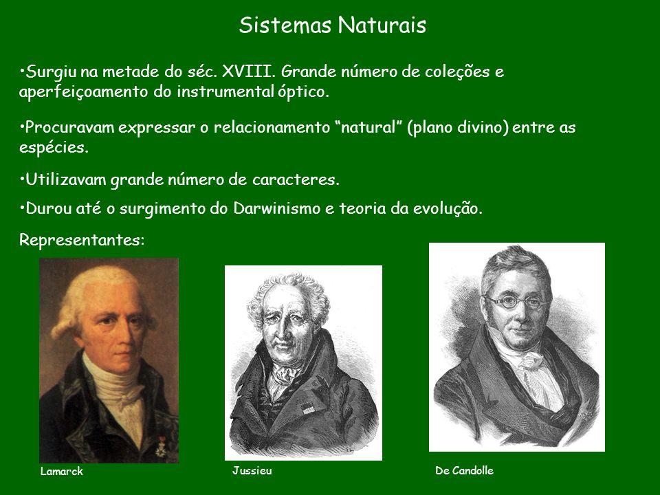 Sistemas Naturais Procuravam expressar o relacionamento natural (plano divino) entre as espécies. Surgiu na metade do séc. XVIII. Grande número de col