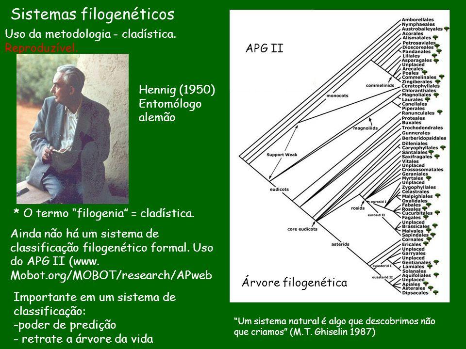 Sistemas filogenéticos Uso da metodologia - cladística. Reproduzível. * O termo filogenia = cladística. Ainda não há um sistema de classificação filog