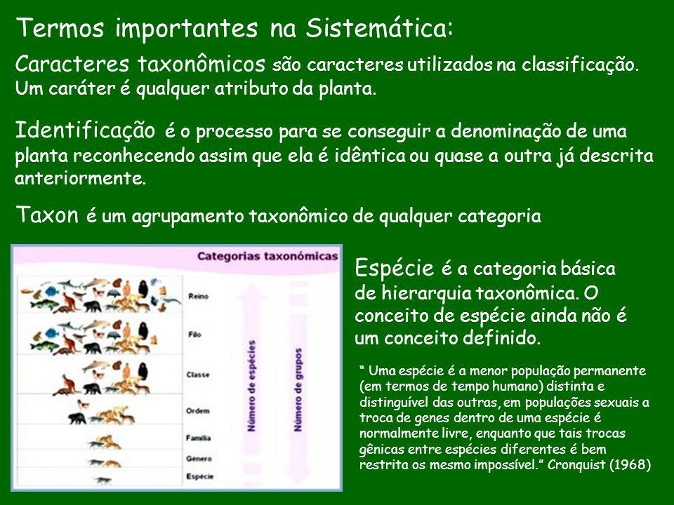 Identificação é o processo para se conseguir a denominação de uma planta reconhecendo assim que ela é idêntica ou quase a outra já descrita anteriorme