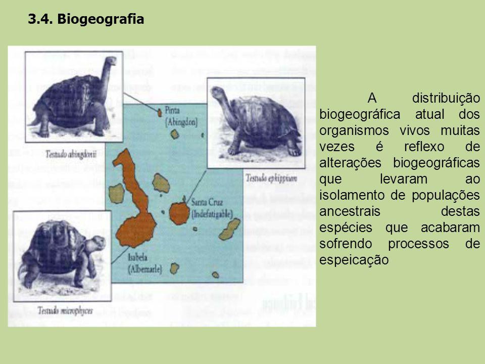 3.4. Biogeografia A distribuição biogeográfica atual dos organismos vivos muitas vezes é reflexo de alterações biogeográficas que levaram ao isolament