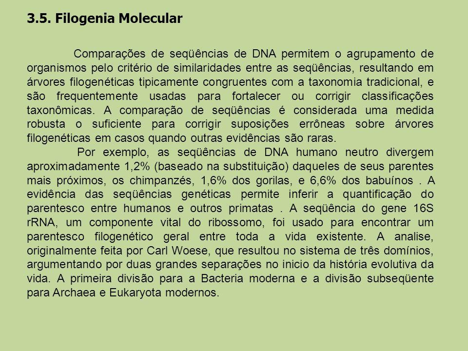 3.5. Filogenia Molecular Comparações de seqüências de DNA permitem o agrupamento de organismos pelo critério de similaridades entre as seqüências, res