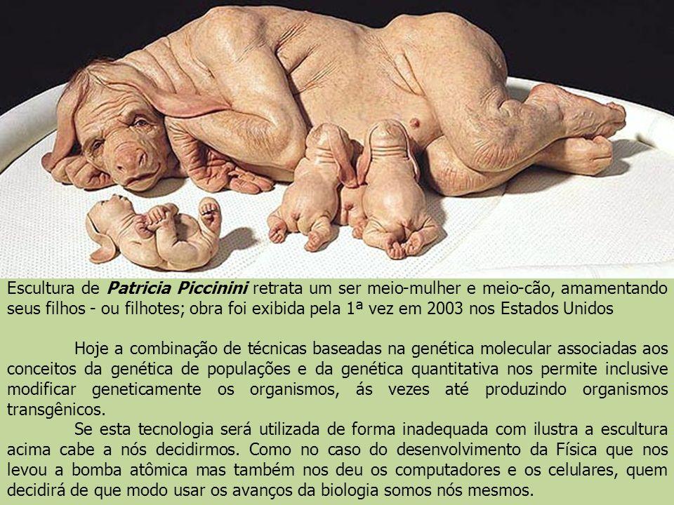 Escultura de Patricia Piccinini retrata um ser meio-mulher e meio-cão, amamentando seus filhos - ou filhotes; obra foi exibida pela 1ª vez em 2003 nos