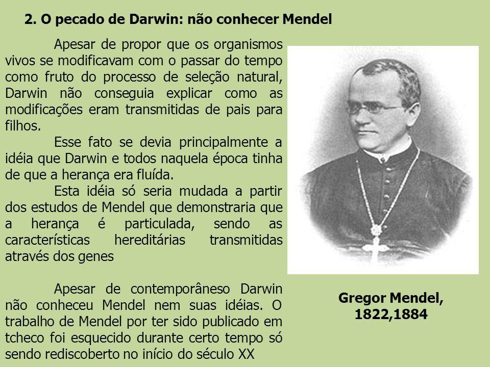 2. O pecado de Darwin: não conhecer Mendel Gregor Mendel, 1822,1884 Apesar de propor que os organismos vivos se modificavam com o passar do tempo como