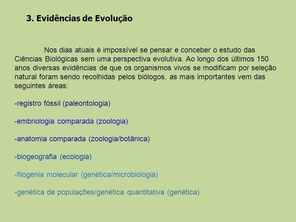 3. Evidências de Evolução Nos dias atuais é impossível se pensar e conceber o estudo das Ciências Biológicas sem uma perspectiva evolutiva. Ao longo d