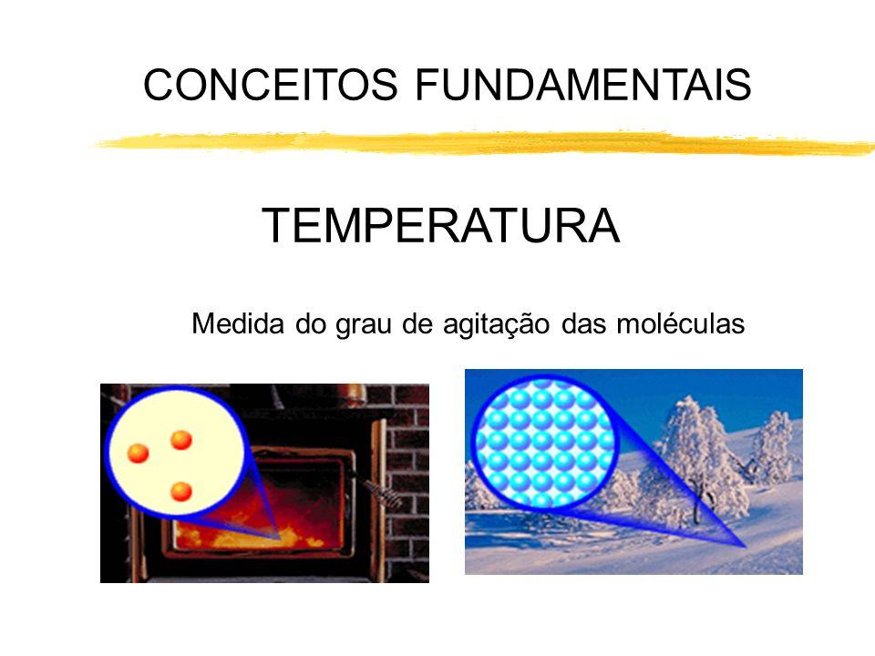 CONCEITOS FUNDAMENTAIS TEMPERATURA Medida do grau de agitação das moléculas