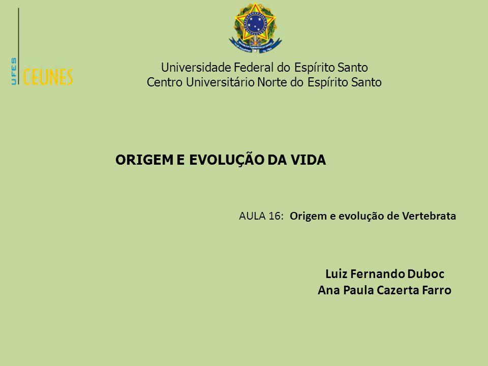 Universidade Federal do Espírito Santo Centro Universitário Norte do Espírito Santo ORIGEM E EVOLUÇÃO DA VIDA AULA 16: Origem e evolução de Vertebrata