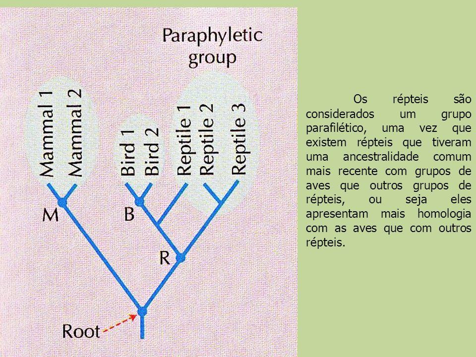 Os répteis são considerados um grupo parafilético, uma vez que existem répteis que tiveram uma ancestralidade comum mais recente com grupos de aves qu