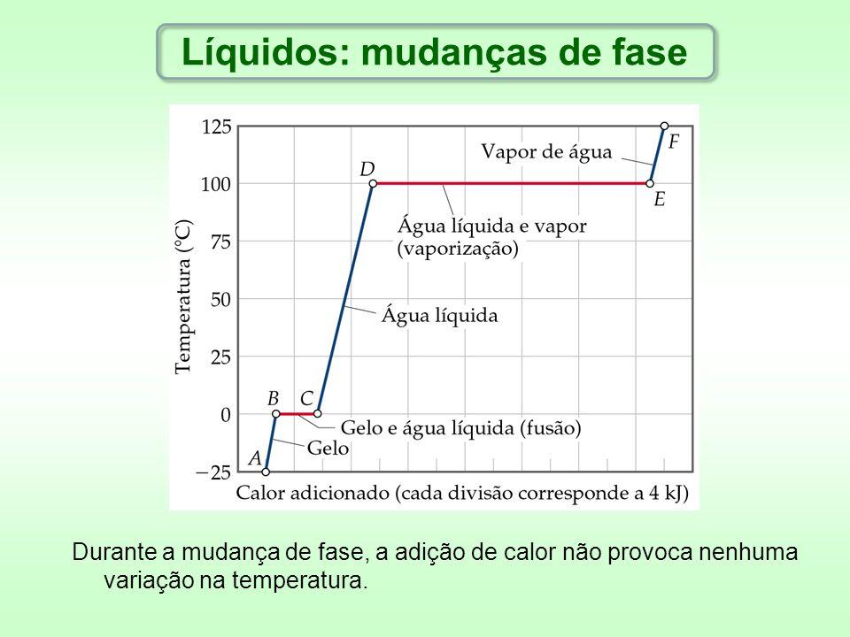 Durante a mudança de fase, a adição de calor não provoca nenhuma variação na temperatura.