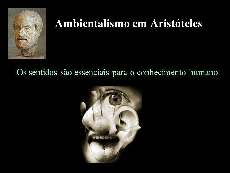 Ambientalismo em Aristóteles Os sentidos são essenciais para o conhecimento humano