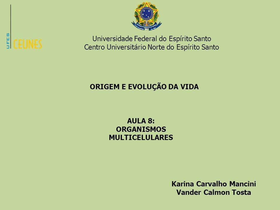 Universidade Federal do Espírito Santo Centro Universitário Norte do Espírito Santo ORIGEM E EVOLUÇÃO DA VIDA AULA 8: ORGANISMOS MULTICELULARES Karina
