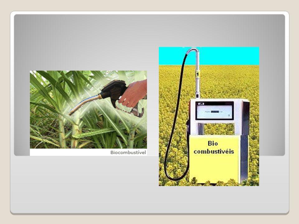Biomassa Sólida; Biocombustíveis Gasosos; Biocombustíveis Líquidos: Etanol Biodiesel Metanol