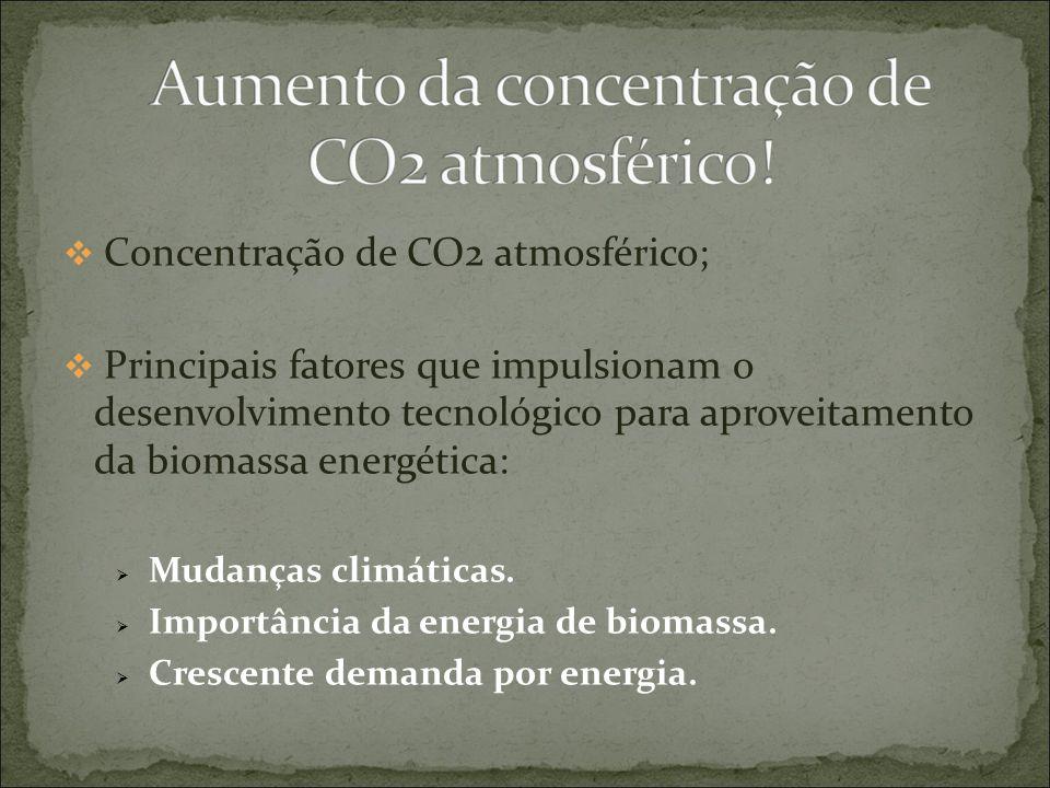 Objetivo da agroenergia Desenvolver e transferir conhecimento e tecnologias que contribuam para a produção sustentável da agricultura de energia.