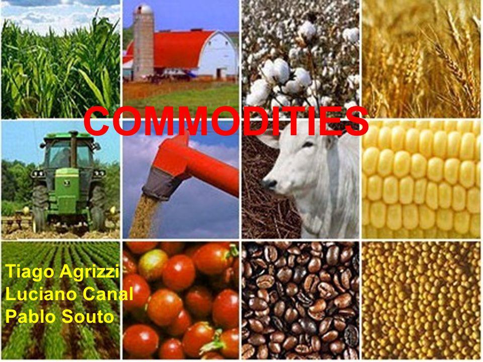 A expansão da cultura da soja foi a principal responsável pela introdução do conceito de agronegócio no país.