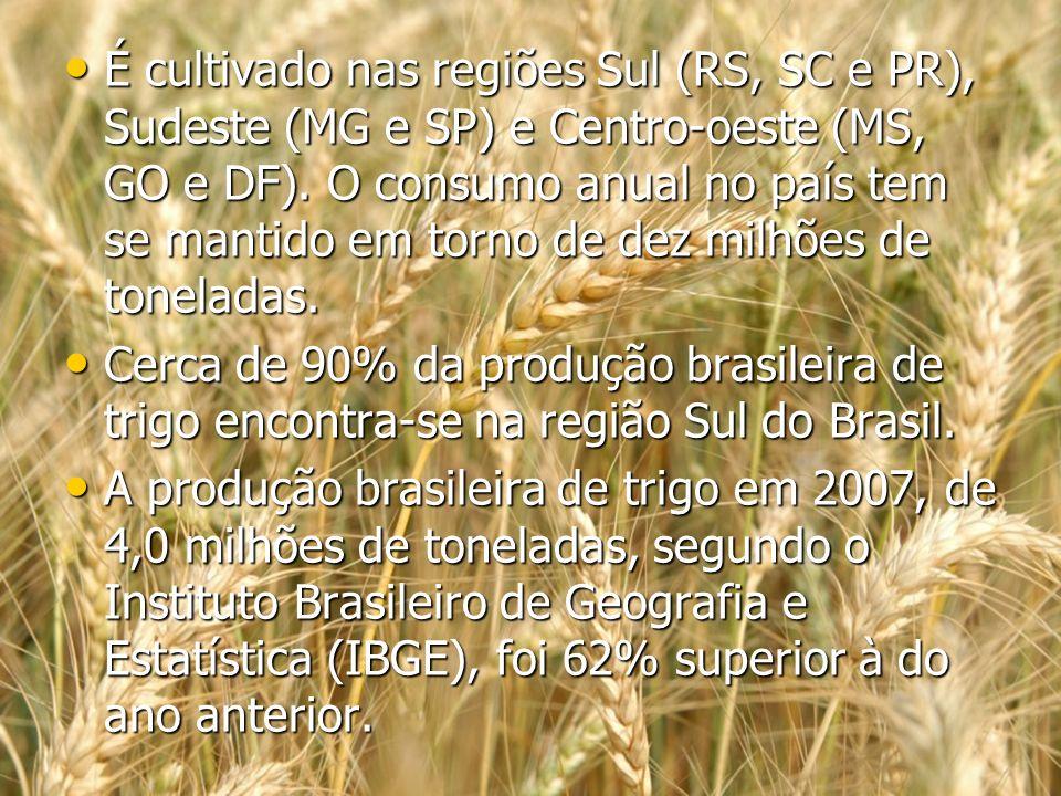 É cultivado nas regiões Sul (RS, SC e PR), Sudeste (MG e SP) e Centro-oeste (MS, GO e DF). O consumo anual no país tem se mantido em torno de dez milh
