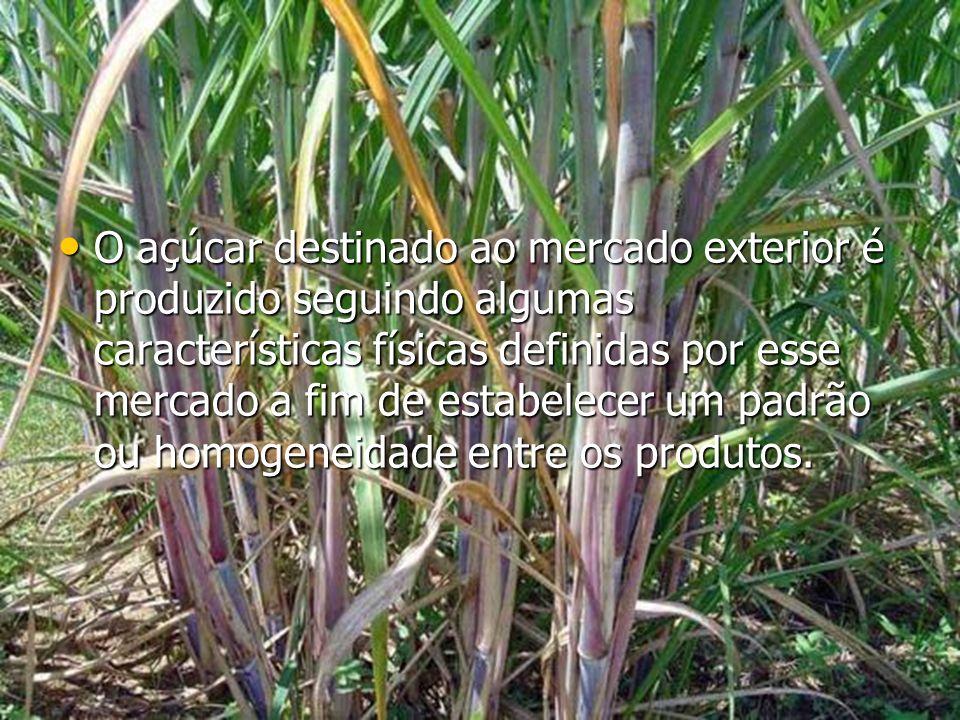 O açúcar destinado ao mercado exterior é produzido seguindo algumas características físicas definidas por esse mercado a fim de estabelecer um padrão