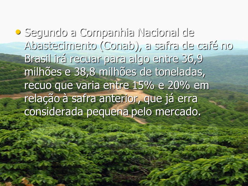 Segundo a Companhia Nacional de Abastecimento (Conab), a safra de café no Brasil irá recuar para algo entre 36,9 milhões e 38,8 milhões de toneladas,
