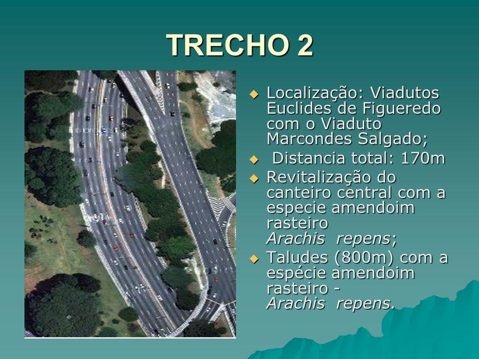 TRECHO 2 Localização: Viadutos Euclides de Figueredo com o Viaduto Marcondes Salgado; Localização: Viadutos Euclides de Figueredo com o Viaduto Marcon