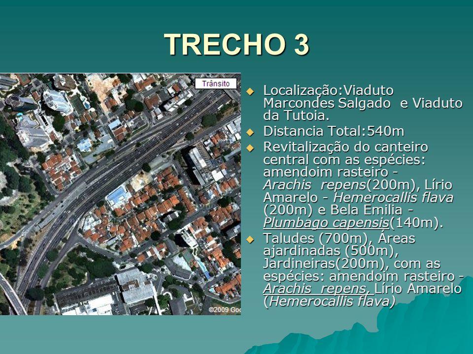 TRECHO 3 Localização:Viaduto Marcondes Salgado e Viaduto da Tutoia. Localização:Viaduto Marcondes Salgado e Viaduto da Tutoia. Distancia Total:540m Di