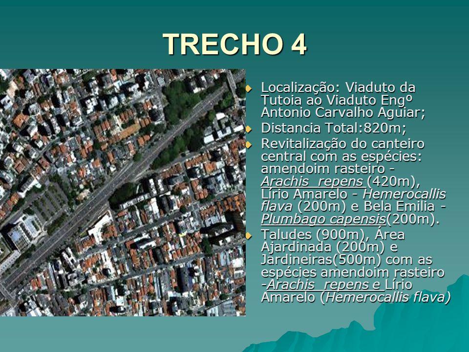 TRECHO 4 Localização: Viaduto da Tutoia ao Viaduto Engº Antonio Carvalho Aguiar; Localização: Viaduto da Tutoia ao Viaduto Engº Antonio Carvalho Aguia