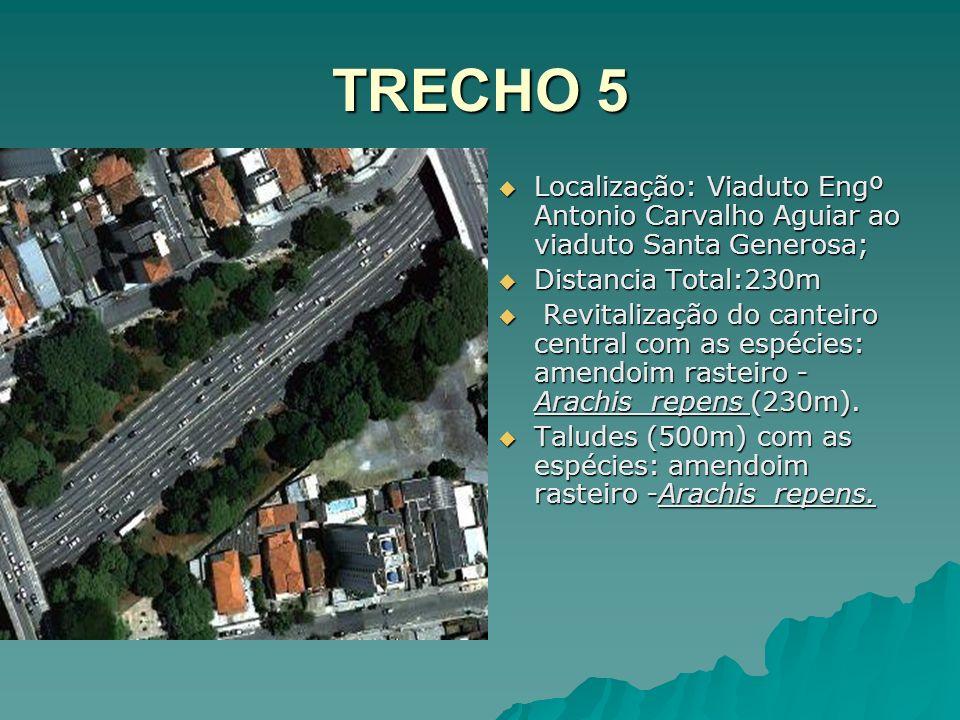 TRECHO 5 Localização: Viaduto Engº Antonio Carvalho Aguiar ao viaduto Santa Generosa; Localização: Viaduto Engº Antonio Carvalho Aguiar ao viaduto San