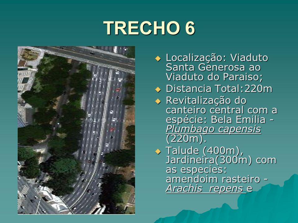 TRECHO 6 Localização: Viaduto Santa Generosa ao Viaduto do Paraiso; Localização: Viaduto Santa Generosa ao Viaduto do Paraiso; Distancia Total:220m Di