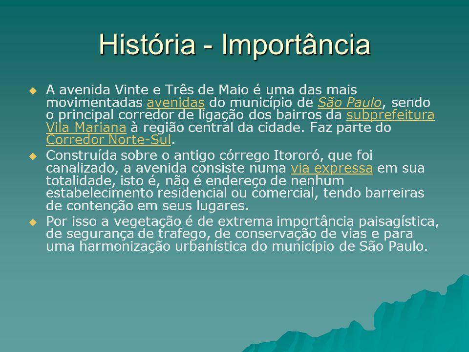 História - Importância A avenida Vinte e Três de Maio é uma das mais movimentadas avenidas do município de São Paulo, sendo o principal corredor de li