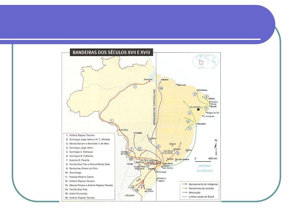 FISCALIZAÇÃO REAL Intendência das Minas: - governo especial para as zonas auríferas, diretamente vinculado à Lisboa.