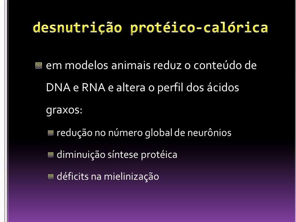 em modelos animais reduz o conteúdo de DNA e RNA e altera o perfil dos ácidos graxos: redução no número global de neurônios diminuição síntese protéic