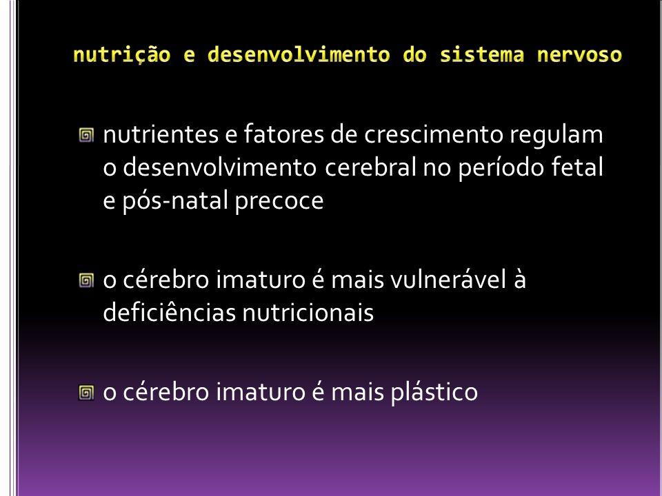 nutrientes que têm maior importância nesta fase do desenvolvimento: proteínas energia certos lipídios ferro cobre iodo selênio vitamina A colina folato Georgieff, 2007