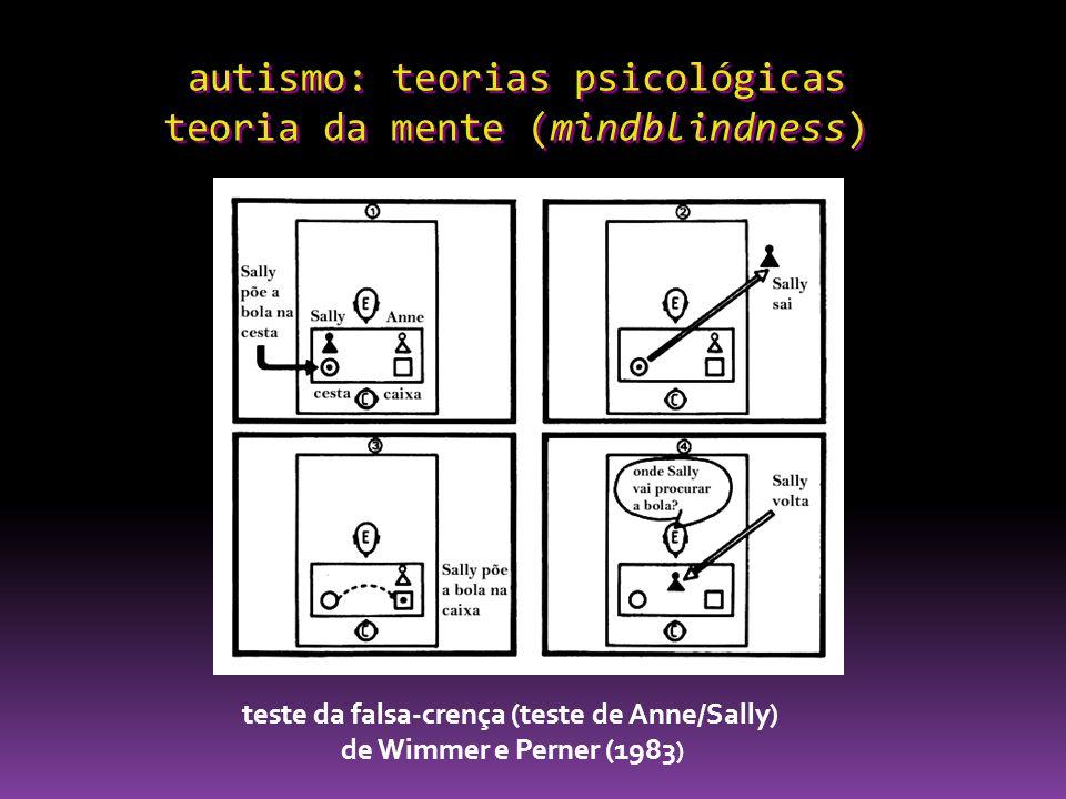 autismo: teorias psicológicas teoria da mente (mindblindness) teste da falsa-crença (teste de Anne/Sally) de Wimmer e Perner (1983 )