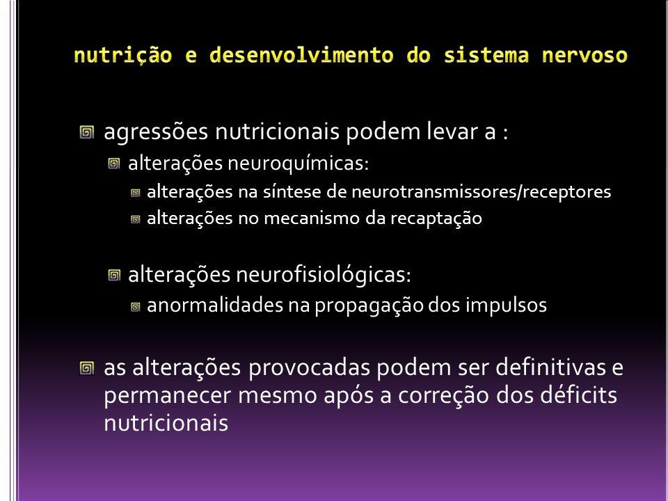 agressões nutricionais podem levar a : alterações neuroquímicas: alterações na síntese de neurotransmissores/receptores alterações no mecanismo da rec