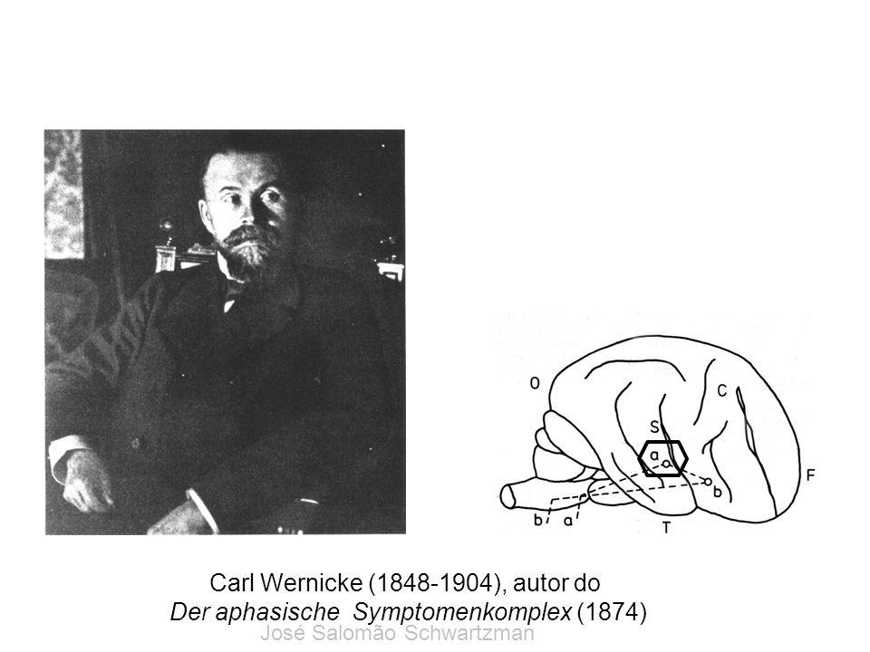 Carl Wernicke (1848-1904), autor do Der aphasische Symptomenkomplex (1874) José Salomão Schwartzman