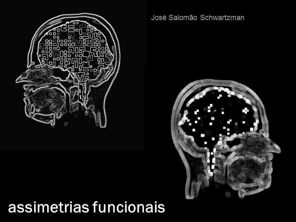 assimetrias funcionais José Salomão Schwartzman