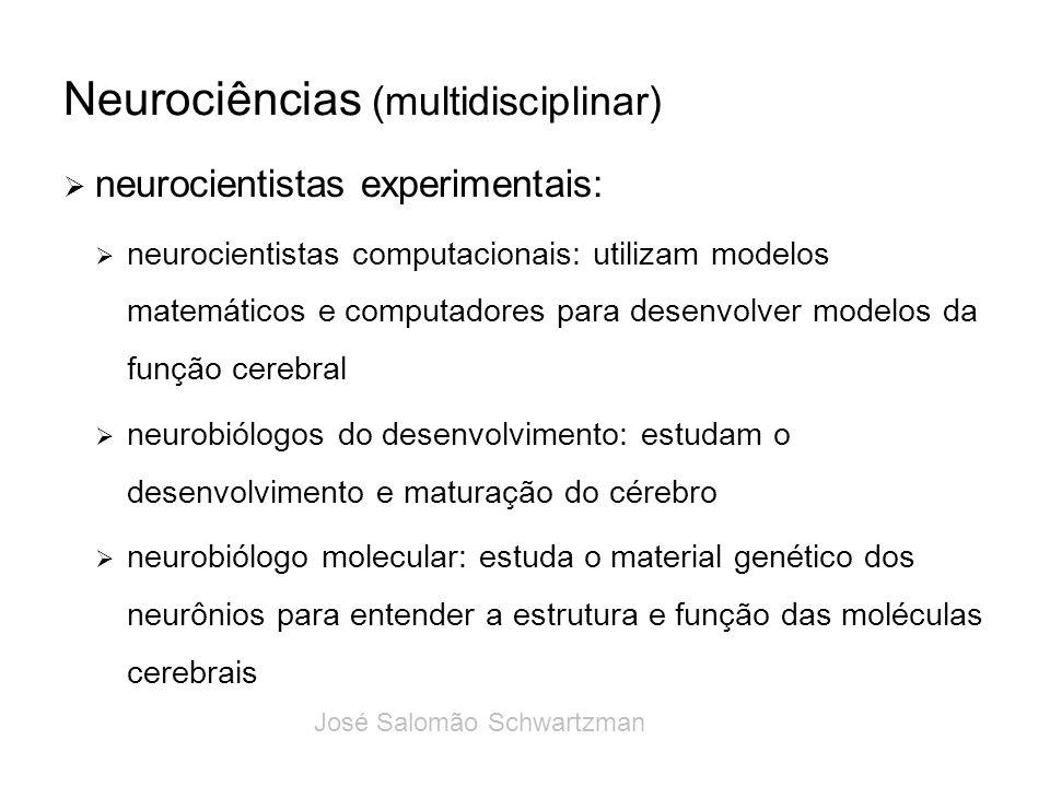 Neurociências (multidisciplinar) neurocientistas experimentais: neurocientistas computacionais: utilizam modelos matemáticos e computadores para desen