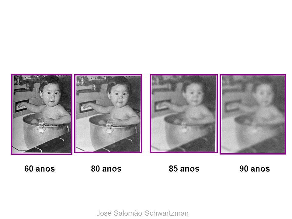 60 anos80 anos85 anos90 anos José Salomão Schwartzman