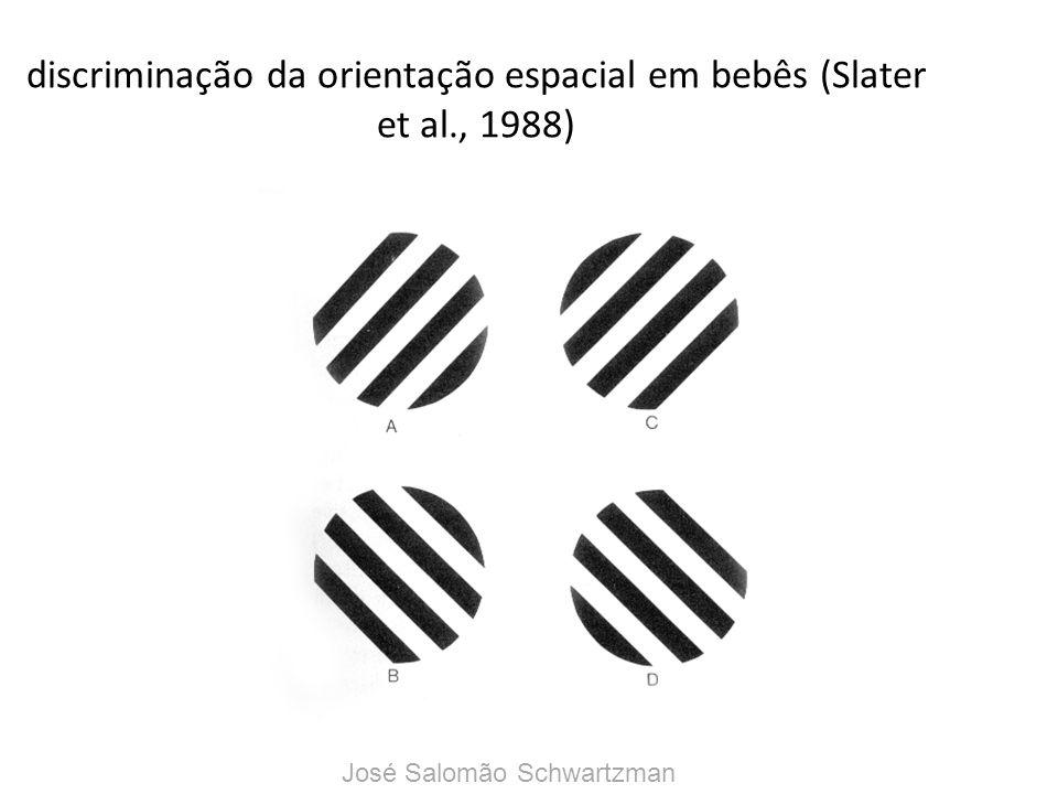 discriminação da orientação espacial em bebês (Slater et al., 1988) José Salomão Schwartzman