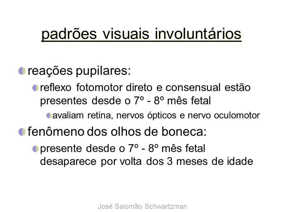 discriminação da orientação espacial em bebês (Slater et al., 1988) estudados 16 recém-nascidos (idade média de 3 dias e 18 horas) 15 dos 16 bebês olharam mais para o estímulo visual novo demonstrando a presença de orientação espacial desde o nascimento José Salomão Schwartzman